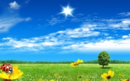 Unser Frühlingsgeschenk für Euch